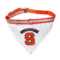 Syracuse University Medium Dog Collar Bandana