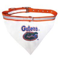 University of Florida Large Dog Collar Bandana