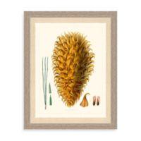 Pines I Giclée Pines Framed Art Print