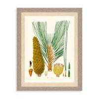 Pines III Giclée Pines Framed Art Print