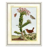 Flowers and Bird Framed Giclée Print Wall Art II