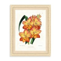 Botanical Bundle Framed Giclée Print Wall Art II