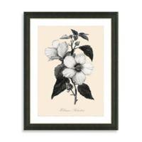 Framed Yellow and White Botanical Giclee Print I Wall Art