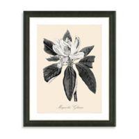 Framed Yellow and White Botanical Giclee Print III Wall Art
