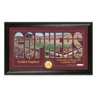 University of Minnesota Stadium Minted Coin Panoramic Photo Mint