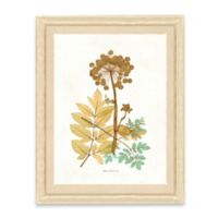 Framed Giclee Nature Print Wall Art I