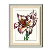 Framed Giclee Wild Flower Print Wall Art I