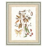 Framed Giclee Butterfly Scene Print Wall Art I