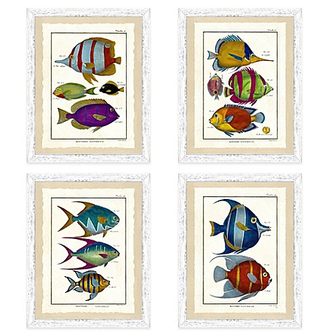 image of School of Fish Framed Wall Art Collection