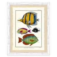 School of Fish Print V Framed Wall Art