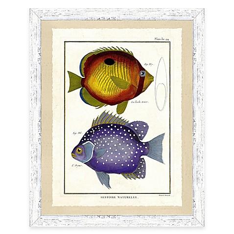 Buy school of fish print vi framed wall art from bed bath for Closest fish store