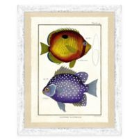 School of Fish Print VI Framed Wall Art