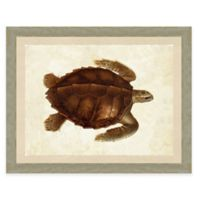 Turtle Print I Giclée Framed Wall Art