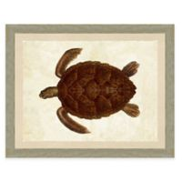 Turtle Print II Giclée Framed Wall Art