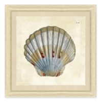 Sea Shell Print IV Giclée Framed Wall Art