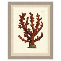 Colorful Coral Print III Giclée Framed Wall Art