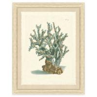 Teal Coral Print I Giclée Framed Wall Art