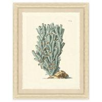 Teal Coral Print II Giclée Framed Wall Art