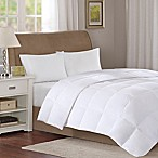 Sleep Philosophy True North 3M Light Warmth King Down Comforter in White