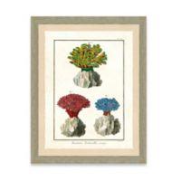 Framed Giclée Sea Coral Print I Wall Art