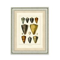 Framed Giclée Sea Shell Print I Wall Art