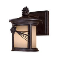 Minka Lavery® Abbey Lane™ 1-Light 9.88-Inch Wall-Mount Outdoor Lantern in Iron Oxide