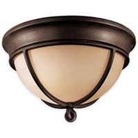 Minka Lavery® Aspen™ II 2-Light Outdoor Flush-Mount in Aspen Bronze™