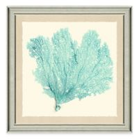 Framed Giclée Teal Sea Fan Print I Wall Art