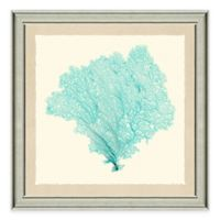 Framed Giclée Teal Sea Fan Print II Wall Art
