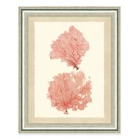 Double Pink Sea Fan I Framed Art Print