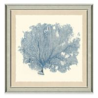 Blue Sea Fan I Framed Art Print