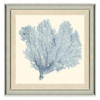Blue Sea Fan II Framed Art Print