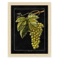 Chalkboard Grape I Sketch Framed Art Print