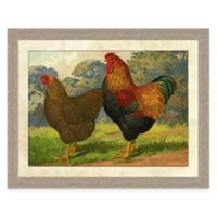 Farm Chicken I Framed Art Print