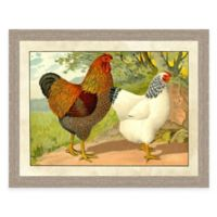 Farm Chicken II Framed Art Print