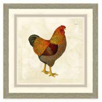 Framed Giclée Chicken II Print Wall Art