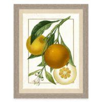 Framed Giclée Orange Grouping I Print Wall Art
