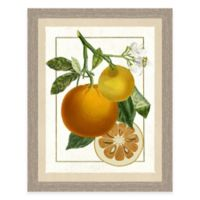 Framed Giclée Orange Grouping II Print Wall