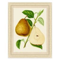 Pear Framed Art Print
