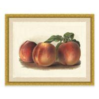 Rustic Peach Framed Art Print