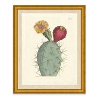 Desert Plant I Framed Art Print
