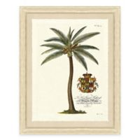 Palm Tree II Framed Art Print