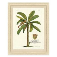 Palm Tree III Framed Art Print