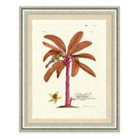 Pink Palm Tree I Framed Art Print