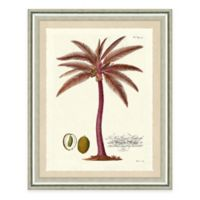 Pink Palm Tree II Framed Art Print