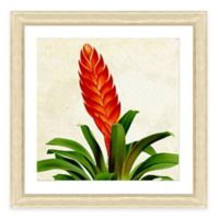 Tropical Plant I Framed Art Print