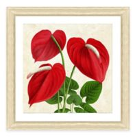 Tropical Plant II Framed Art Print