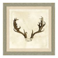 Antler Framed I Art Print
