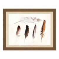 Multiple Feathers I Framed Art Print
