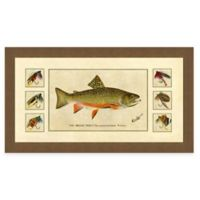 Trout and Fly I Framed Art Print